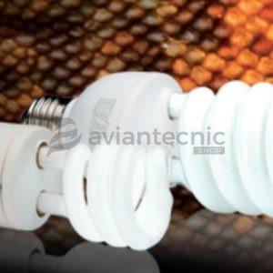 Lámpara desérticos