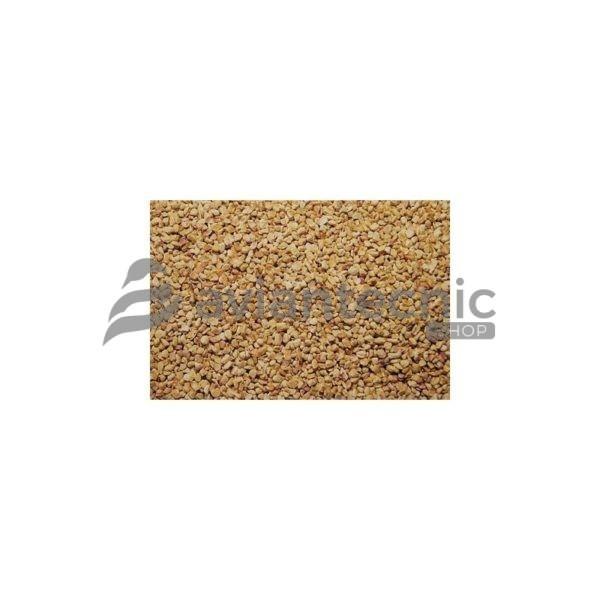 Tutolo maiz grano grueso