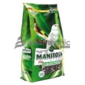 Alta Germinación Manitoba