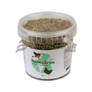 Nutriworm